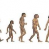 A Look at Timeshare Evolution Thumbnail